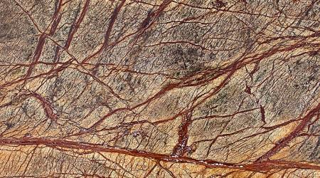 Marmura Rainforest Brown
